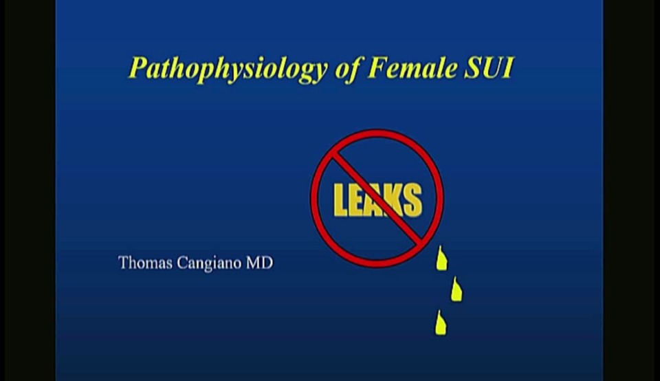 Treatment of SUI in the Male and Female, Both Non-Surgical and Surgical Approaches