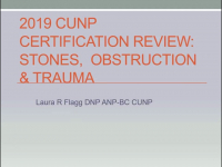 Certification Review Course for the APN