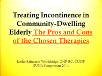 Treating Incontinence in Community-Dwelling Elderly: The Pros and Cons of the Chosen Therapies