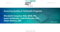 Assessing Quality of Telehealth Programs