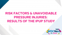 Risk Factors & Unavoidable Pressure Injuries: Results of the IPUP Study