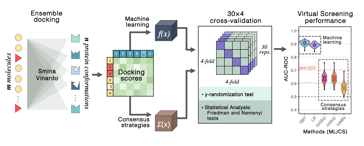 <b>Overview of the methodology workflow: </b>ensemble docking and 30x4 cross-validation to implement machine learning models (GBT: Gradient Boosting Tress, LR: Logistic Regression) over ensemble docking scores. ML performance outperformed traditional consensus strategies (csGEO, csAVG, csMIN) and the best result of single-conformation docking (best SCD).