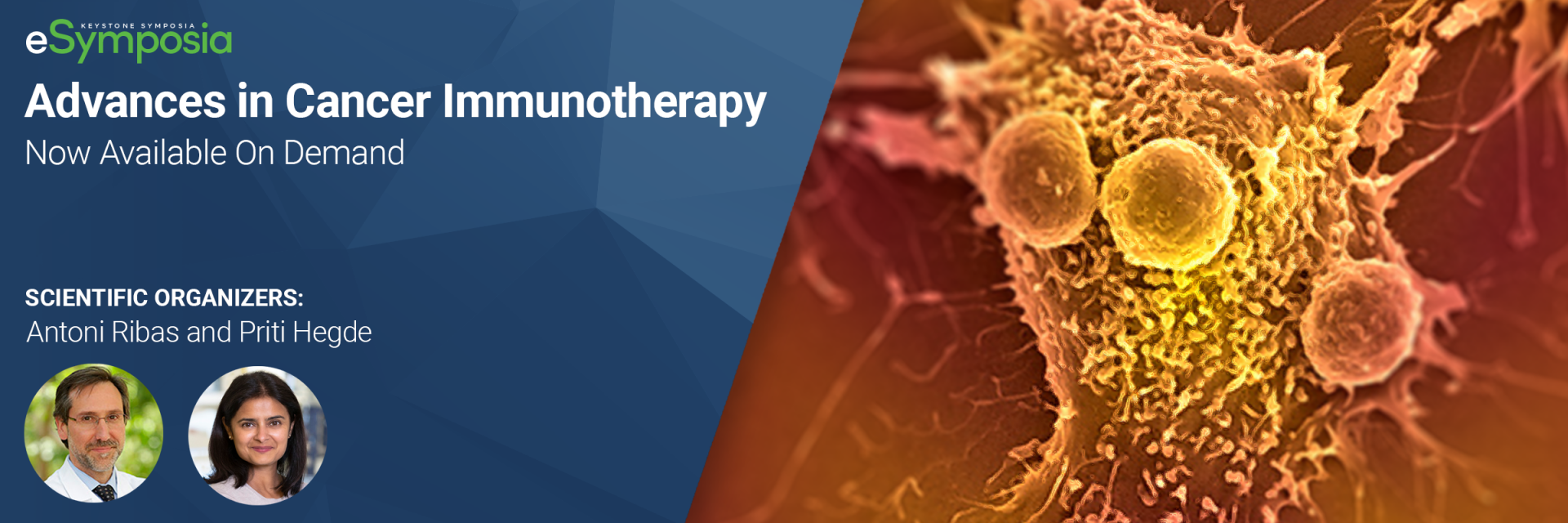 Cancer Immunotherapy in the Age of Pandemics